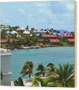 Palm Trees Of Oyster Bay Wood Print