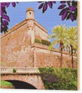 Palma De Majorca Old City Walls Wood Print