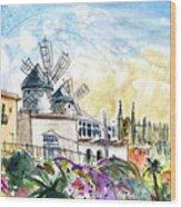 Palma De Mallorca Panoramic 03 Wood Print