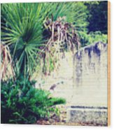 Palmetto And Head Stone Wood Print