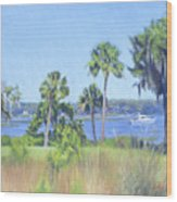 Palmetto Bluff Backyard Wood Print