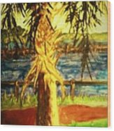 Palmetto Tree Wood Print
