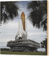 Palmetto Trees Frame Space Shuttle Wood Print by Stocktrek Images