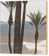 Palms And Light Wood Print