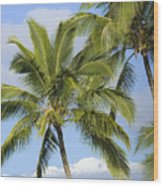 Palms And Mountaintops Wood Print