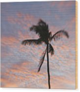 Palms And Pink Clouds Wood Print