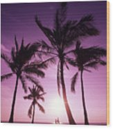 Palms And Pink Sunset Wood Print