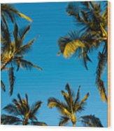 Palms And Sky Wood Print