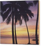Palms And Sunset Sky Wood Print