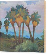Palms At Anza Borrego State Park Wood Print