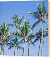 Palms In Living Harmony Wood Print