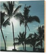 Palms In Silhouette Wood Print