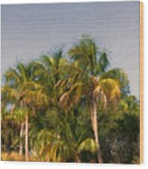 Palms - Naples Florida Wood Print