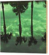 Palms Of Florida Wood Print