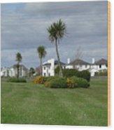 Palms Of Ireland Wood Print