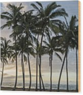 Palms Of Kauai Wood Print