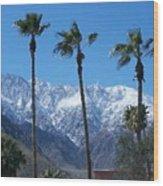 Palms With Snow Wood Print
