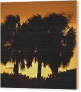 Palmset Wood Print
