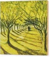 Palo Verde Pathway Wood Print