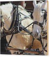 Palomino Horses Wood Print