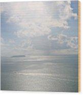 Palomino Island Wood Print
