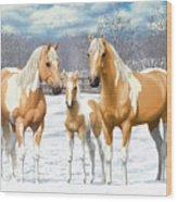 Palomino Paint Horses In Winter Pasture Wood Print