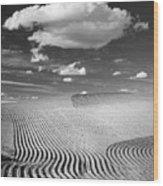 Palouse Field 2918 Wood Print