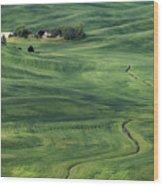Palouse Green Fields Wood Print