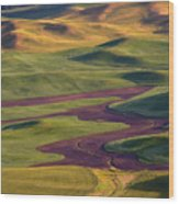 Palouse Hills Wood Print