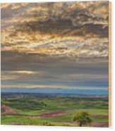 Palouse Sunset Wood Print