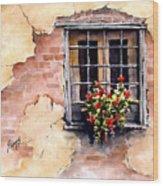 Pampa Window Wood Print by Sam Sidders