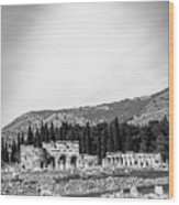 Paragliding Over The Ruins Of Pamukkale Wood Print