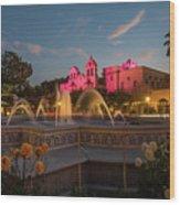 Panama Fountain Wood Print