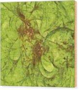 Pancreatoid Feeling  Id 16097-214225-63860 Wood Print