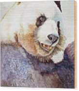 Panda Eating Wood Print by Bonnie Rinier