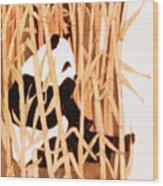 Panda In Bamboo Wood Print