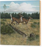Panhandle Deer Wood Print