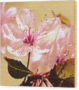 Panoplia Floral Wood Print