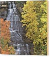 Panorama Fall Color Chapel Falls Upper Penninsula Mi Wood Print