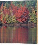 Panorama Fall Color Moccasin Lake Upper Peninsula Mi Wood Print