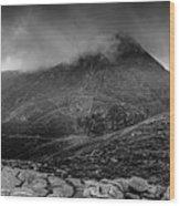 Panorama From Slievenaglogh Wood Print