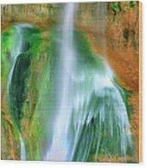 Panorama Lower Calf Creek Falls Escalante Nm Utah Wood Print