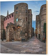 Panorama Of Ancient Roman Gate And Placa Nova In The Morning, Ba Wood Print