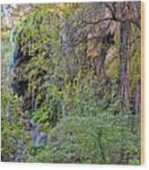Panorama Of Gorman Falls At Colorado Bend State Park - Lampasas Texas Hill Country Wood Print