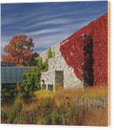 Panorama Of New Modern Building At Toronto Botanical Garden In E Wood Print