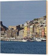 Panorama Of Portovenere Wood Print