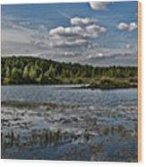 Panorama Of The Lake In Elkino Wood Print