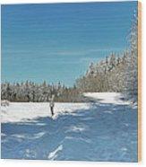 Panorama Of Winter Park Wood Print