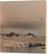 Panorama Winter Ocean Scene Wood Print