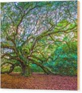 Panoramic Angel Oak Tree Charleston Sc Wood Print